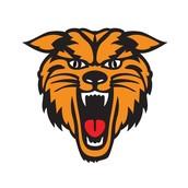 New Bloomfield Summer League