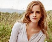 Emma Watson as Hero