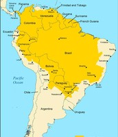 Yellow Fever In South America