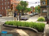 Greener Streets and Neighborhoods and our Solutions (Adaptation Strategy #1)