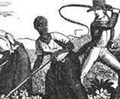 Haitians Revolt!