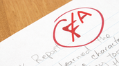 Extra Learning Opportunity: Replace an Essay Grade