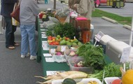 Lime Valley Mill Organics at Lititz Market