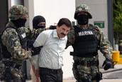 Historia de El Chapo