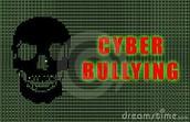 cyber scull:()