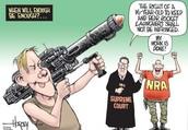 The Right to Bear Arms Political Cartoon