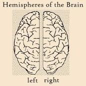 what is Hemisphericity ?