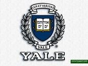 Yales Logo