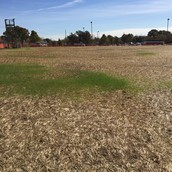 Band Practice Field