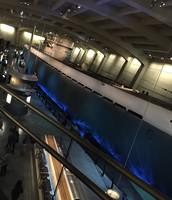 The German Submarine