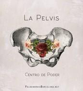 La Pelvis, Centro de Poder