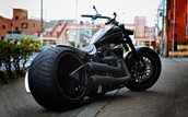 Jose's Custom Harley