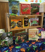 libros informativos acerca de las ranas