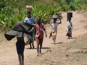 Hauling Water in Malawi