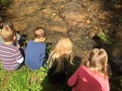 Kindergarten - Asking Strategic Questions