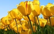Spring Break is on its way!!