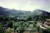 Fem rutes naturals per la montanya de Sant Sofí