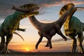 Dinosaurs fighting for food