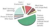 E.coli 0157:H7 Foods Most At Risk Graph
