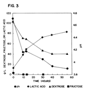 Increased Lactic Acid Production
