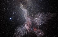 Cygnus,the swan,