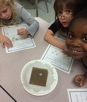 Our Penny Experiment