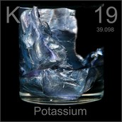 How Life would be Affected without Potassium