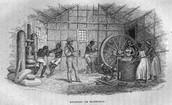 Manioc (Cassava) Processing, Brazil, 1840s