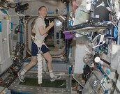Astronaut on the International Space Station