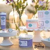 Scentsy Skin Care
