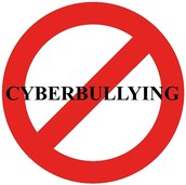 Rule 5: Cyber Bullying: