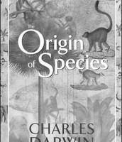 "His Book ""On the Origin of Species"""