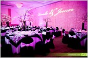 Quinceanera packages from $500-$3,000