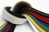 Different kinds of belt