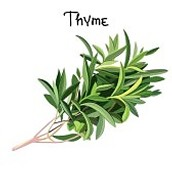 Looking for some herb plants! Buy them from us :)