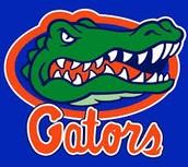 I Like the gators