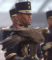 Here an infantry Sargent  holds the golden eagle that depicts the heroic Military forces