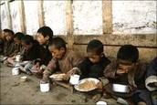 North Korean Starvation