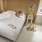 Suggestion on Purchasing a Stearns and Foster Mattress