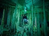 Cave Columns?
