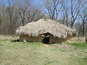 Bark coverd house