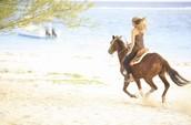 Montar a los caballos