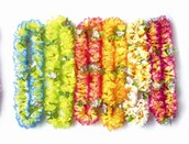 Wear your Leis