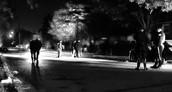 Cops Inspect Scene of Crime
