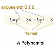 definition of polynomials