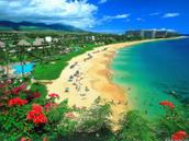 Our region is Maui,Hawaii