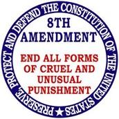 The 8th Amendment