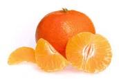 Tangerine Book Summary