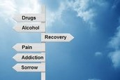 Other Counseling and Support Systems