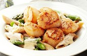Scallops and Asparagus Alfredo